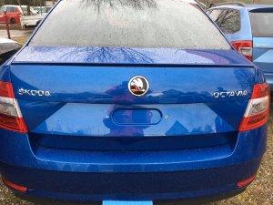 Octavia Facelift 2017.jpg