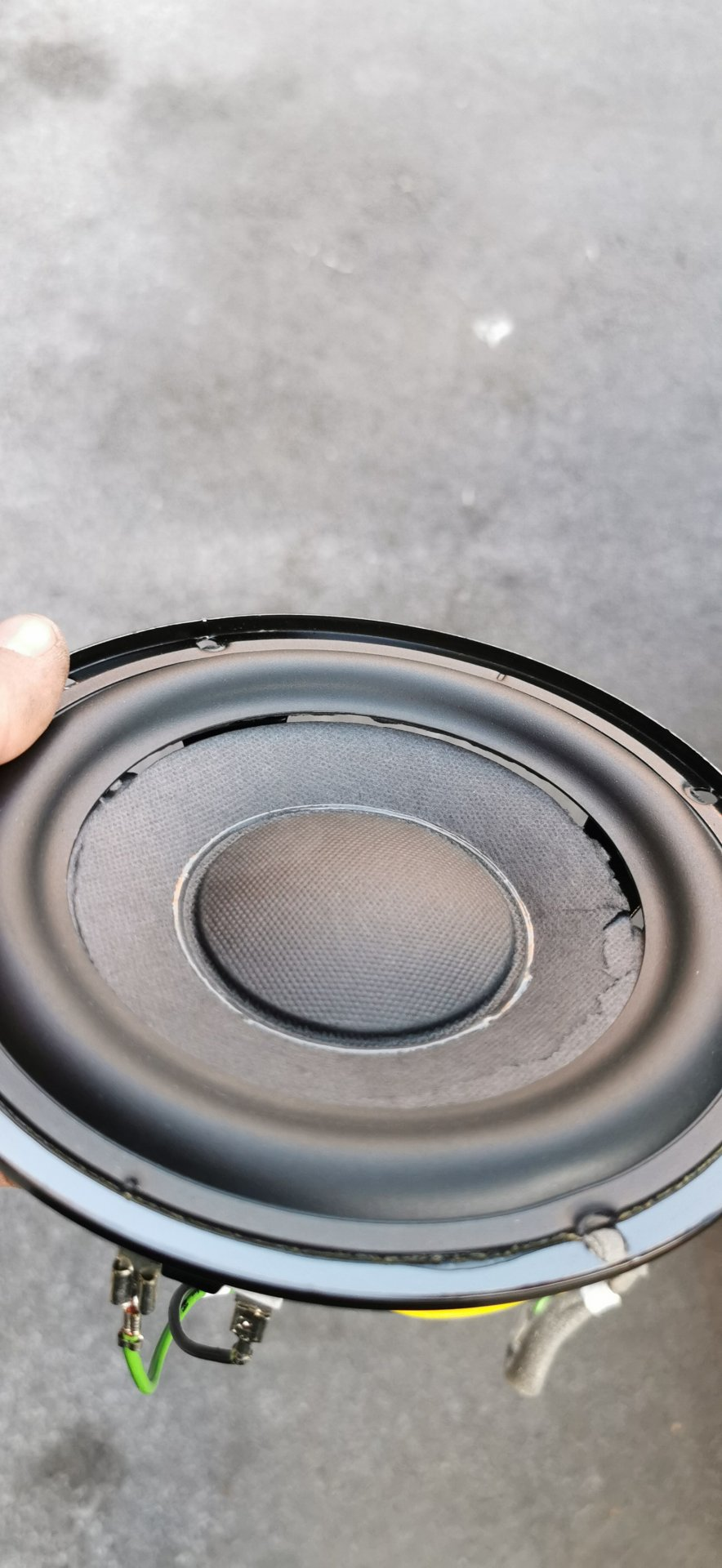 RIP Canton Subwoofer